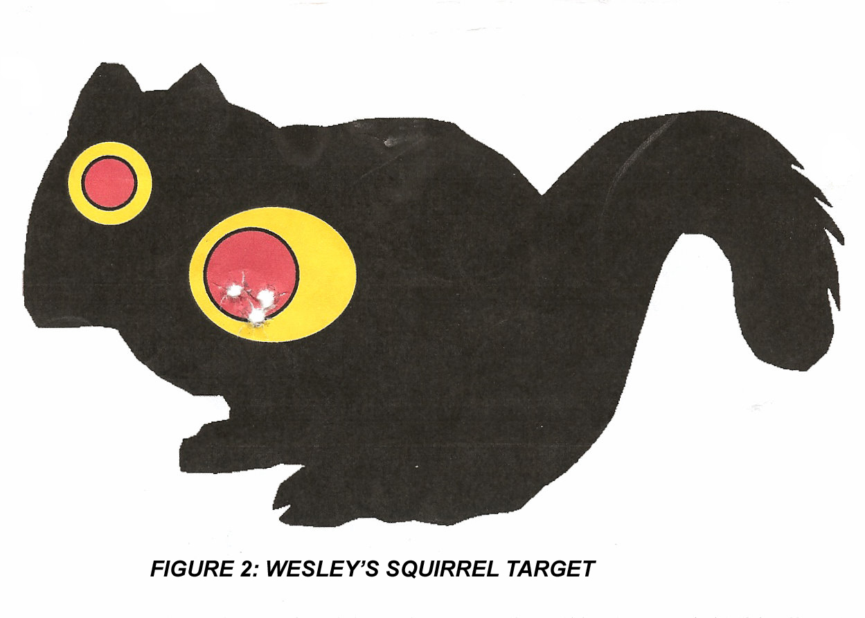 image about Printable Squirrel Target named classes uncovered towards a rifle capabilities class